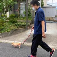 わおんの生活3
